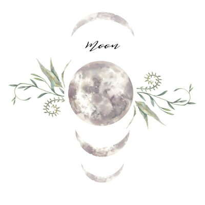 Póster Watercolor moon and plants label. Isolated logo design with plants and lunar silhouette