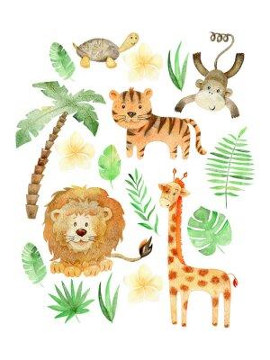 Póster Watercolor safari arrangements.
