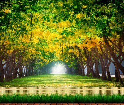 Póster wood terrace with fresh and green beautiful of summer blooming y