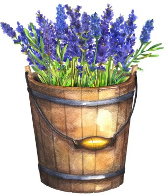 Póster Wooden bucket with lavender
