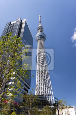 東京 スカイ ツリー と イースト タワー