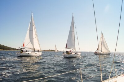 Póster Yacht sailing are on the water along the shore