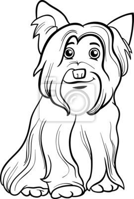Póster Yorkshire Terrier Perro Libro Para Colorear
