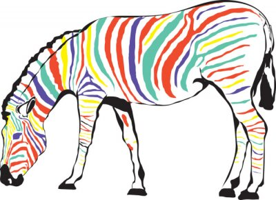 Póster Zebra Kolorowa