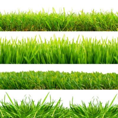 Vinilo 4 prados hierba cortada