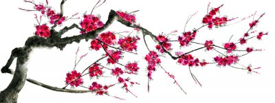 Vinilo A branch of a blossoming sakura. Pink and red stylized flowers of plum mei and  wild cherry . Watercolor and ink illustration of tree in style sumi-e, go-hua,  u-sin. Oriental traditional painting. .