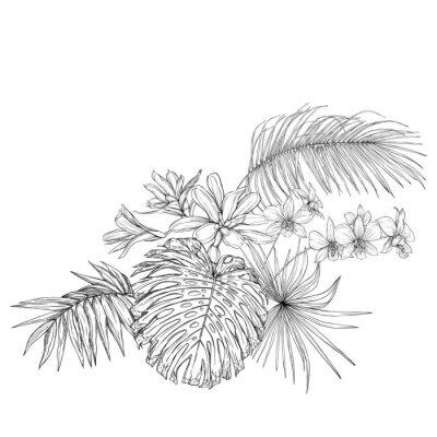 Vinilo A composition of tropical plants, palm leaves