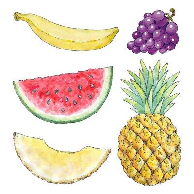 Vinilo Acuarela de diferentes frutas
