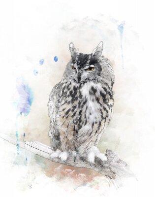 Vinilo Acuarela Imagen De Owl