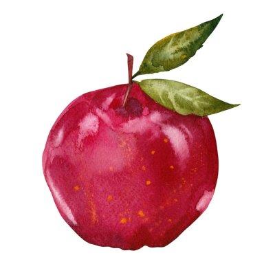 Vinilo acuarela manzana roja