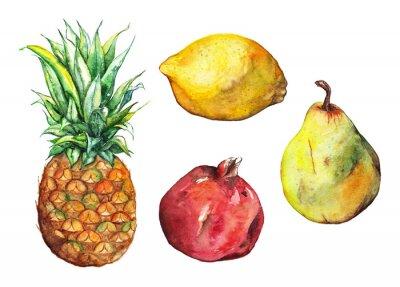 Vinilo Acuarela piña granada limón pera conjunto de frutas