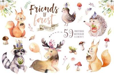 Vinilo Animal bohemio de la historieta del bebé de la acuarela linda del erizo, de la ardilla y de los alces para el nursary, ejemplo aislado arbolado del bosque para los niños. Conejitos animales.