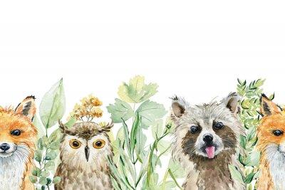 Vinilo Animals watercolor illustration