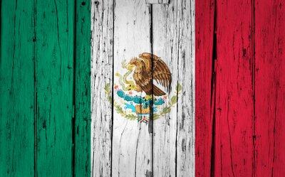 Vinilo Antecedentes México Bandera del Grunge