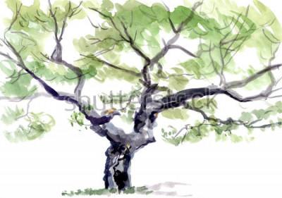 Vinilo árbol, acuarela