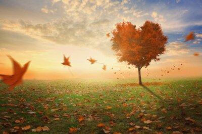 Vinilo Árbol en forma de corazón durante el otoño