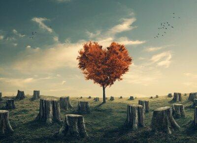 Vinilo Árbol en forma de corazón en el bosque despejado