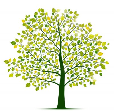 Vinilo Árbol verde aislado