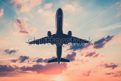 Vinilo avión en el cielo del atardecer - avión, jet sobre fondo de cielo escénico