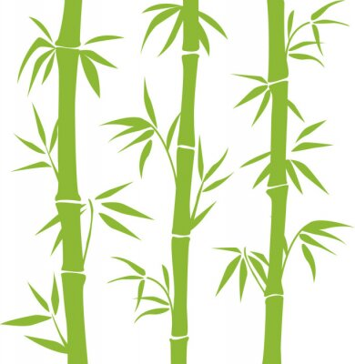 Vinilo Bambú
