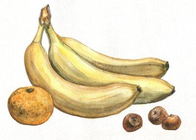 Vinilo Banana, mandarina y avellanas. Pintura de acuarela