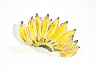 Vinilo banana water color painted