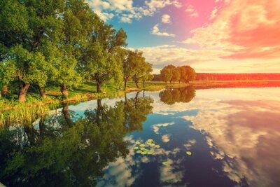 Vinilo Banco de río con árboles al atardecer