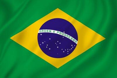 Vinilo Bandera de Brasil