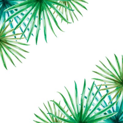 Vinilo Beautiful tropical leaves frame. Palm. Watercolor painting. Exotic plant. Natural print. Sketch drawing. Botanical composition. Greeting card. Painted background. Hand drawn illustration.