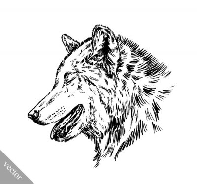 Vinilo Blanco y negro grabar aislado lobo