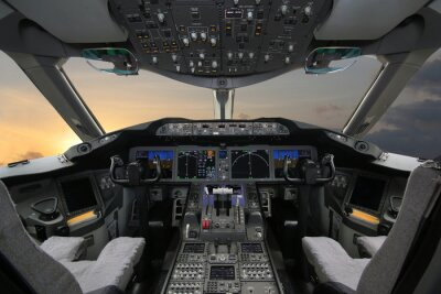 Vinilo Boing 787 Dreamliner, Cabina de mando