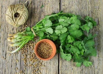 Vinilo Bunch fresh cilantro and coriander seeds