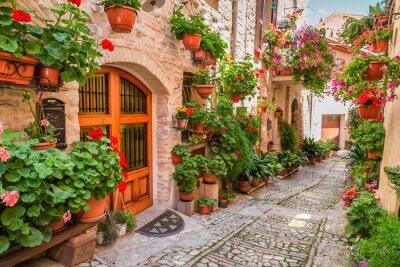 Vinilo Calle en pequeña ciudad en Italia en verano, Umbría