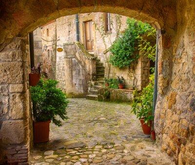 Vinilo Calle estrecha de la ciudad de tuff medieval Sorano con arco, plantas verdes y adoquines, los viajes de fondo de Italia