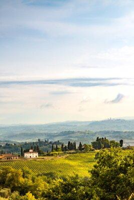 Vinilo Campos de la Toscana