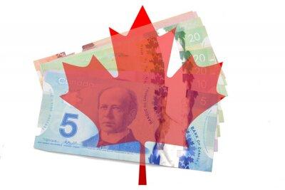 Vinilo Canadiense hoja de arce con dólares sobre fondo blanco