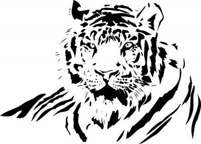 Vinilo cara del tigre