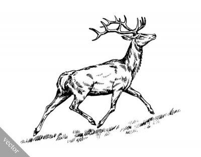 Vinilo Cepillo pintura tinta dibujar vectores ciervos ilustración