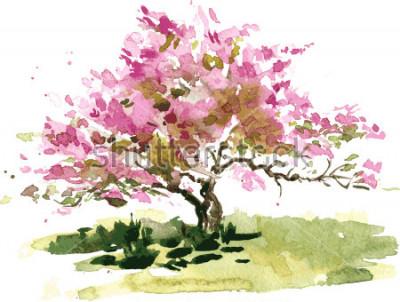 Vinilo Cerezo en flor, dibujo en acuarela, dibujo de acuarela de flores florecientes de manzana, jardín de pintura, fondo de arte de vector dibujado a mano