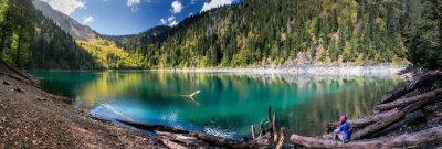 Vinilo Chica admira vista panorámica de las montañas y el lago en la reserva de Ritsa en Abjasia