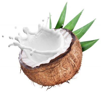 Vinilo Coco con leche salpicaduras en el interior.