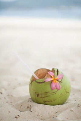 Vinilo Coco en la playa