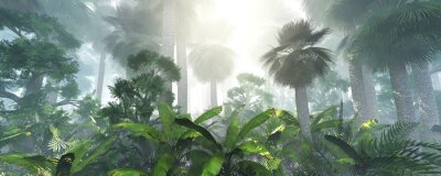 Vinilo coconut jungle in the morning in the fog, forest in the haze. 3d rendering.