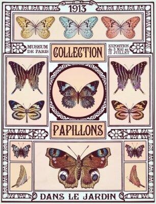 Vinilo Colección de las mariposas
