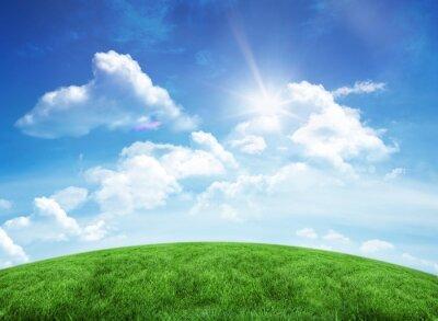 Vinilo Colina verde bajo el cielo azul
