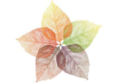 Vinilo coloridas hojas de otoño, vector