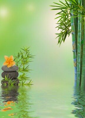 Vinilo Composición aquatique relajación masaje zen