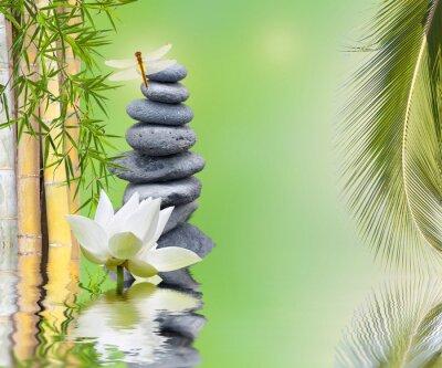 Vinilo composition bambou palmier galets zen aquatique