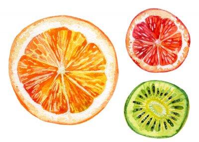 Vinilo Conjunto de acuarela de naranja fresca, kiwi y pomelo