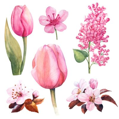Vinilo conjunto de flores de primavera con tulipanes y lilas